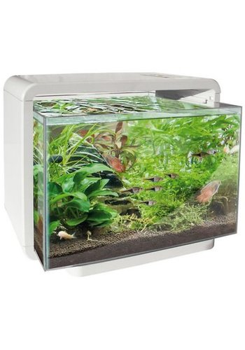 SuperFish Home 15 wit