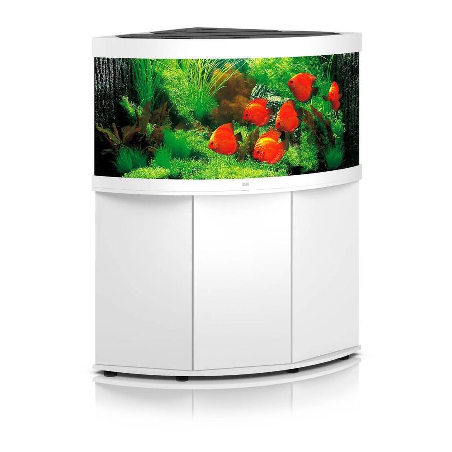 Aquacompleet | Juwel trigon 350 | wit| LED - Aquacompleet