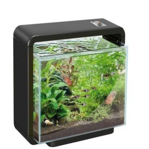Aquacompleet superfish home 25 xl zwart led for Let s go fishing xl