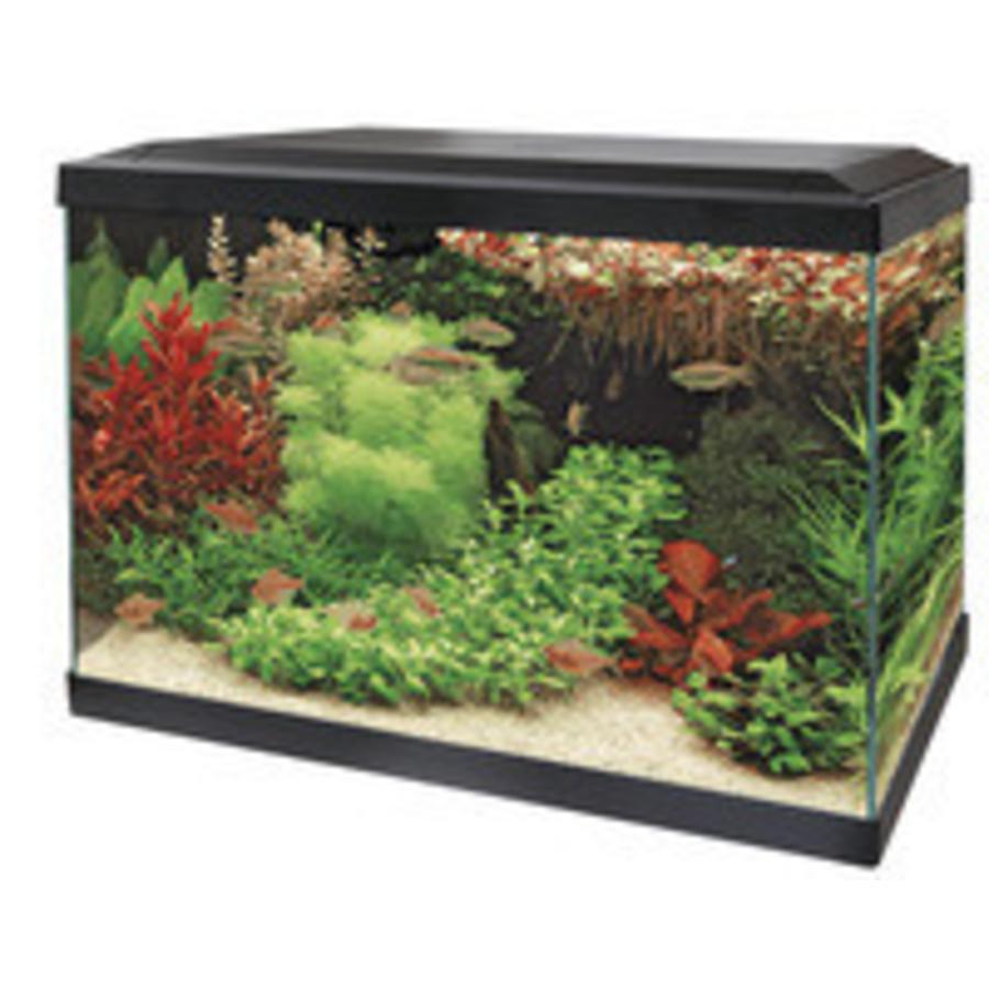 Aquacompleet   Superfish aqua 70 led tropical kit   zwart   LED ...