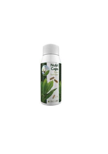 Colombo FloraGrow Nutri Caps