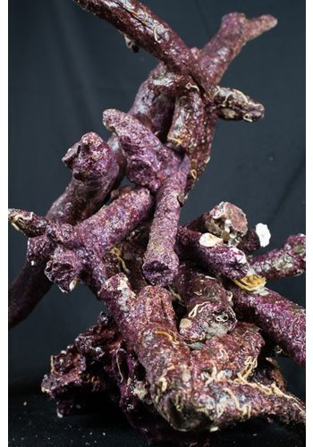 Real Reef Rock Branched bones box 25 kg
