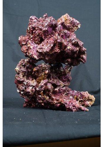 Real Reef Rock Medium/Large box4th generation L