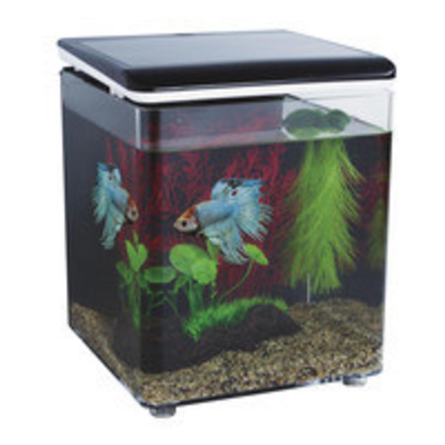 SuperFish Betta 8 aquarium zwart-1