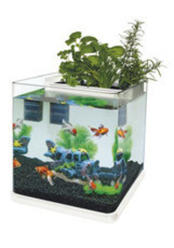 Superfish Aquaponics 23 wit