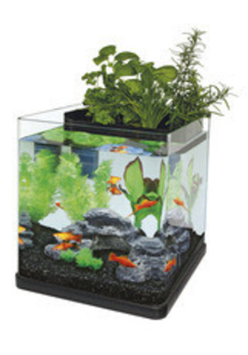 Superfish Aquaponics 23 zwart