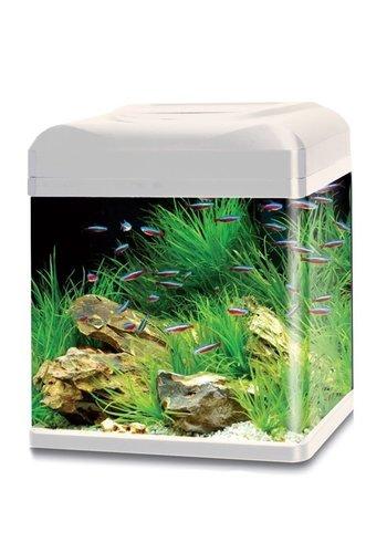 HS Aqua aquarium lago 40 LED wit