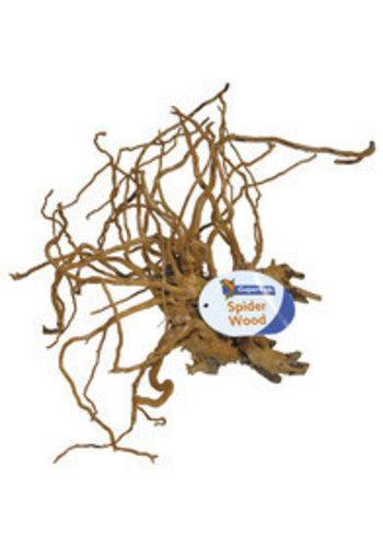 Spiderwood/Azalea small - 20-30 cm.