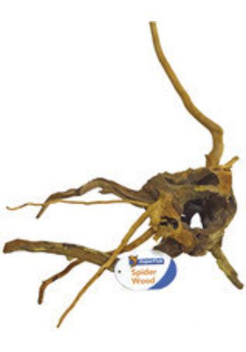 Spiderwood/Azalea medium 30-40 cm.