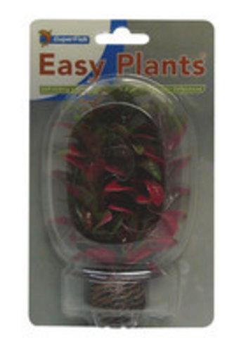 SuperFish Easy plants voorgrond 13 cm nr.7
