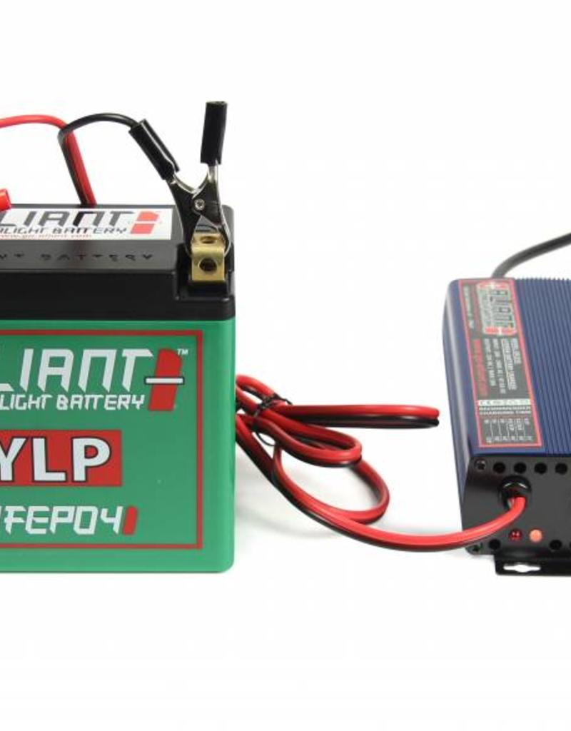 Aliant YLP12 Battery Charger