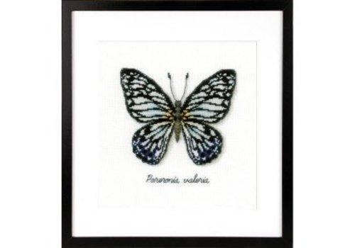 Vervaco La Maison Victor - Blauwe vlinder