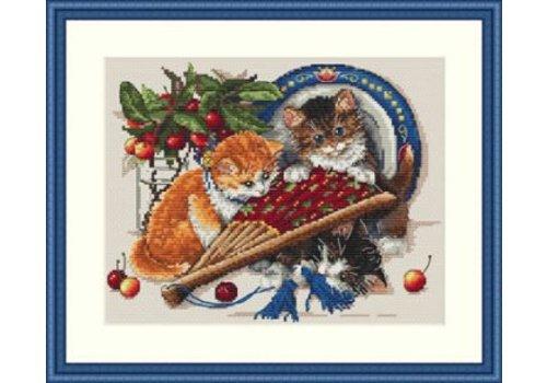 Merejka Kittens & Cherries