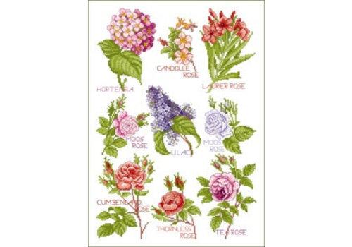 Lindner Bloemen magie