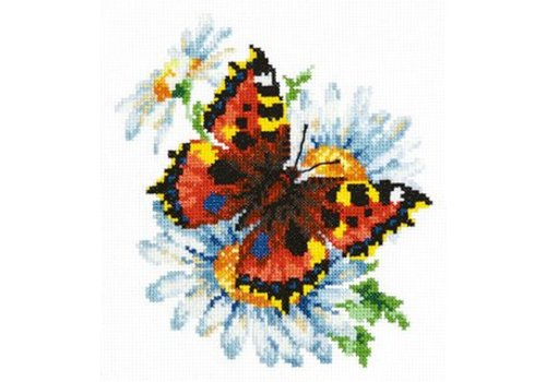 Chudo Igla Butterfly and daisies