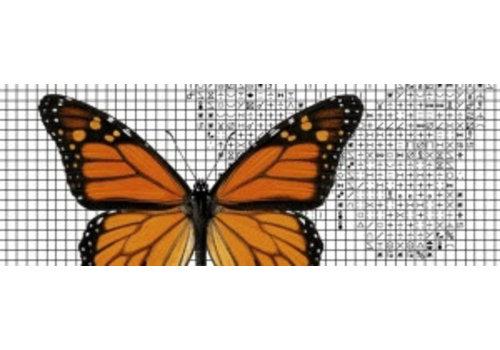 Papilion Papilion borduurpakket 1 - kleuren - 24 x 36 cm