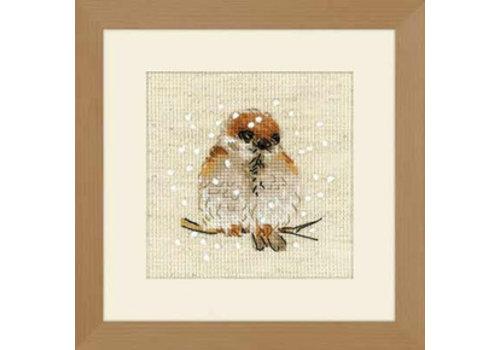 RIOLIS Sparrow