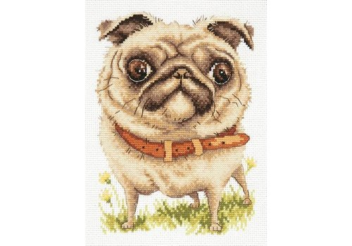 Chudo Igla Borduurpakket Pug dog