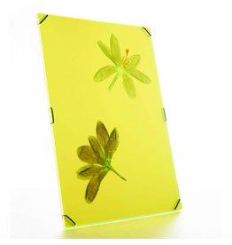 Carmela Bogman Hueframe Bright Yellow Large
