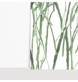 Vleijt Flora Notebook Rhipsalis