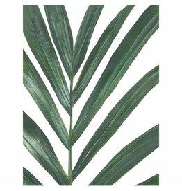 Vleijt Pflanzenplakat Palm