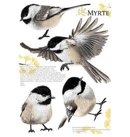 Myrte Wandsticker Meise