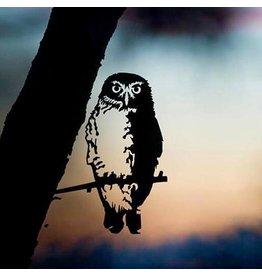 Metalbird Little owl
