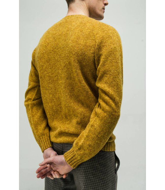 Pure Shetland Crew Neck Sweater in Cumin