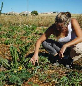Ecosystem Restoration Camps Ecosystem Restoration Camps - 1 jaar