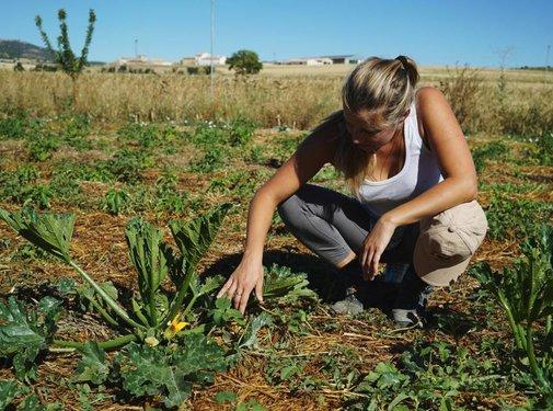 Ecosystem Restoration Camps - 1 jaar