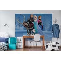 Disney die Eiskönigin - Fototapete 254 x 184 cm