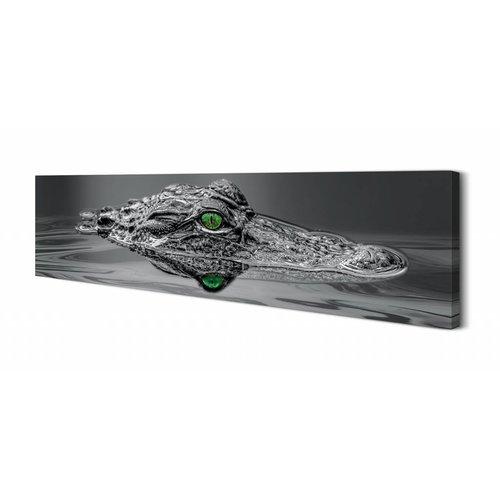 Wandbild Alligator Augen