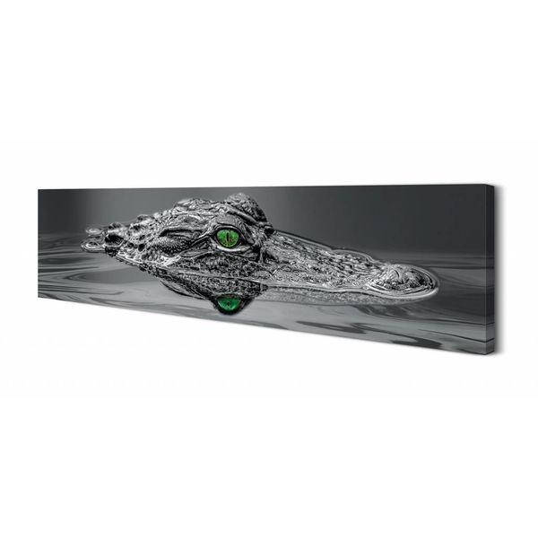 Alligator Küche | Alligator Augen Wandbild Reinders