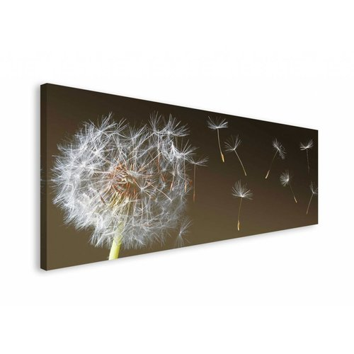 Wandbild Pusteblume im Wind
