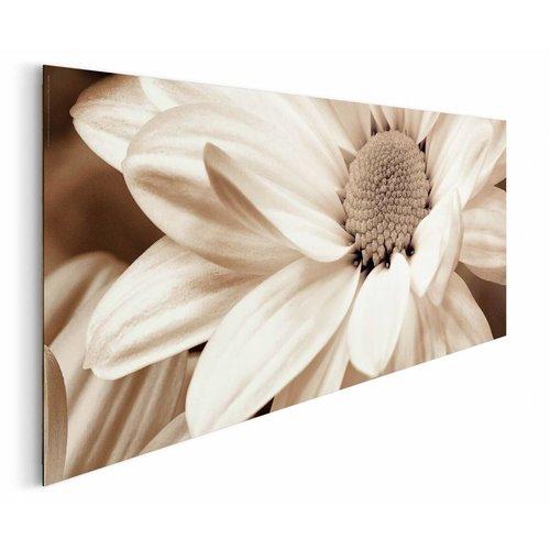 Wandbild Blume in Sepia