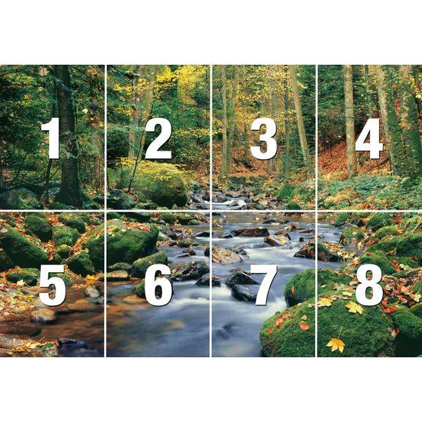 Fluß im Wald  - Fototapete 8-teilig 366 x 254 cm