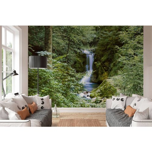 Fototapete Wasserfall im Frühjahr