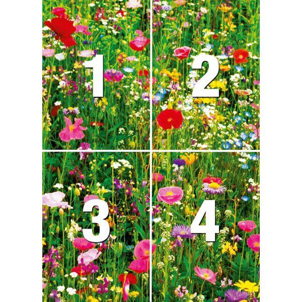Blumenfeld  - Fototapete 4-teilig 183 x 254 cm