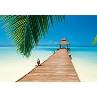 Paradies Strand  - Fototapete 8-teilig 366 x 254 cm