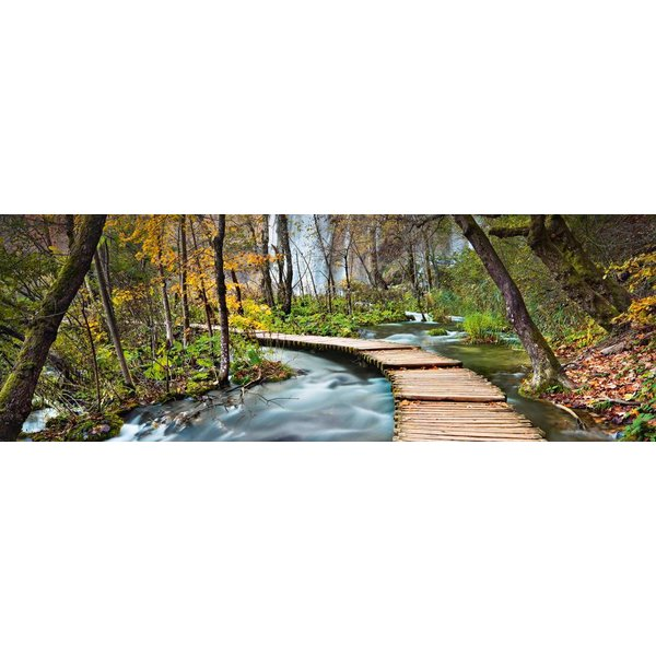 Pfad in den Wald  - Fototapete 4-teilig 366 x 127 cm