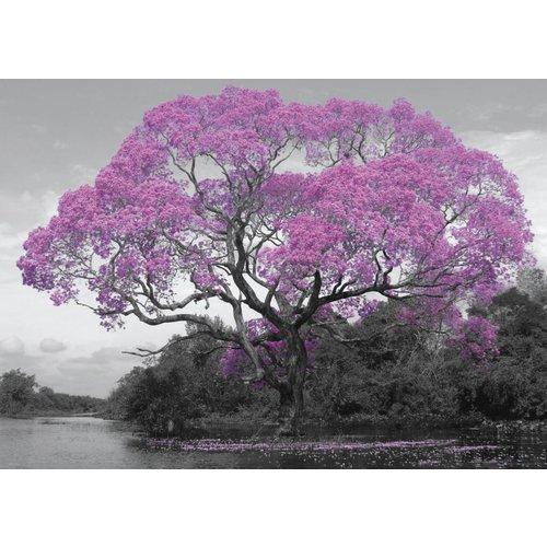 Poster Baum in Blüte