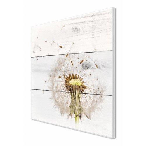 Wandbild Pusteblume Weiß