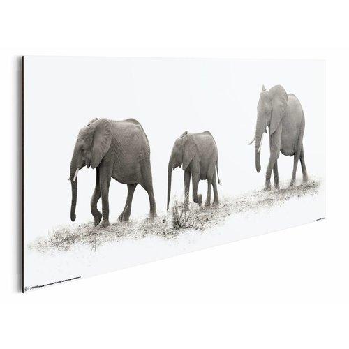 Wandbild Elefantenherde