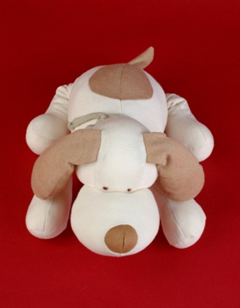 Dog with collar stuffed
