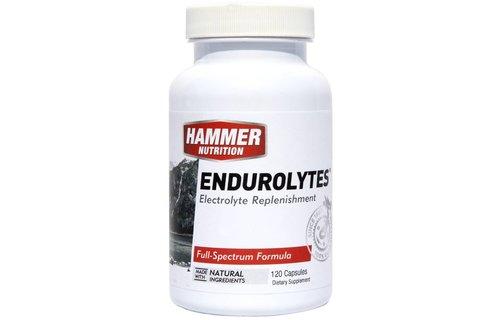 Hammer Nutrition Hammer Endurolytes