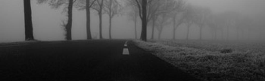 Nat, koud en donker.... Tijd voor de juiste trainingstips voor de winter van Edo van der Meer