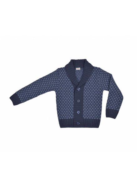cardigan boy - blue