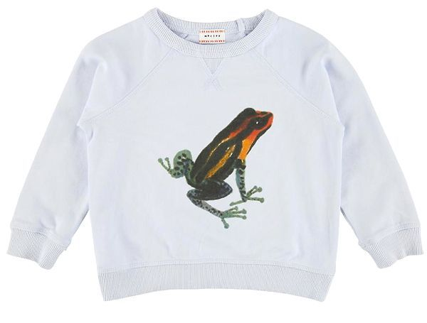 sweater Hector - frog mist