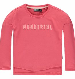 Tumble 'n Dry Sweater Fieke Desert Rose