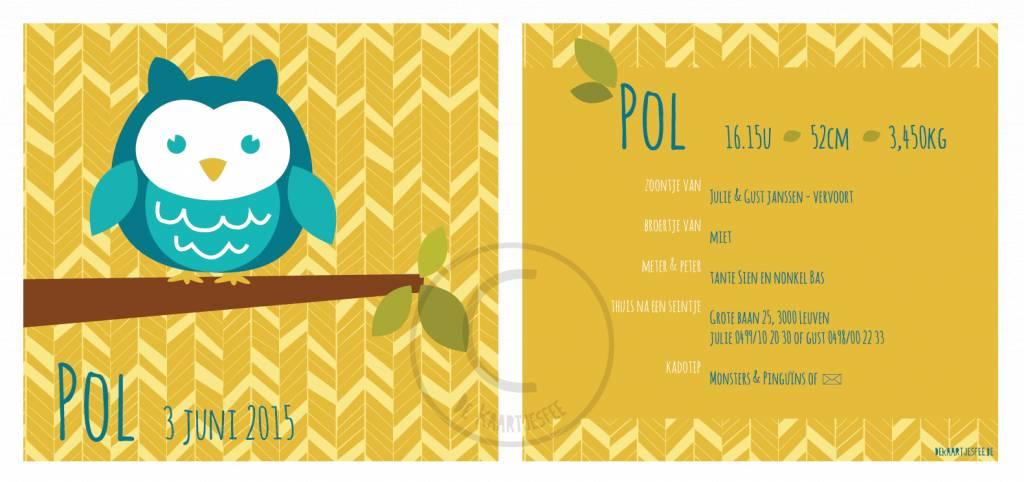 Geboortekaartje Pol